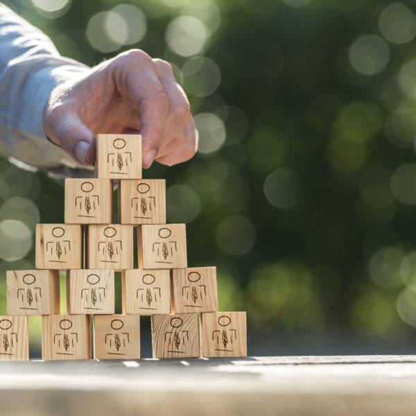 Business Transformation Hierarchie – Markus Hotz